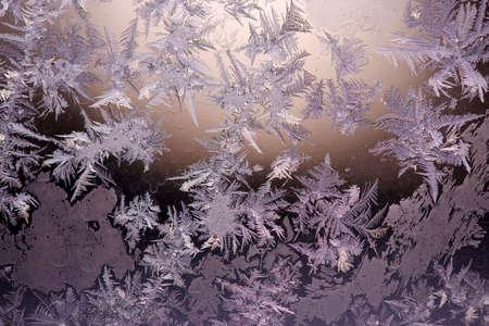 Ice Crystals on Window