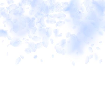 Illustration pour Light blue flower petals falling down. Terrific romantic flowers gradient. Flying petal on white square background. Love, romance concept. Bizarre wedding invitation. - image libre de droit