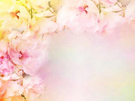 Photo pour beautiful rose flowers border vintage color filters, roses flower background for valentine, wedding card - image libre de droit