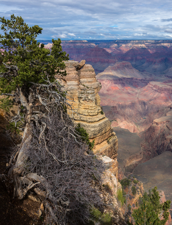 Fascinating scenic view of breathtaking landscape in Grand Canyon National Park, Arizona. United States