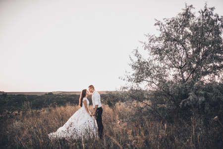 Photo pour bride and groom in wedding white dress walking on the meadow in summer at sunset - image libre de droit