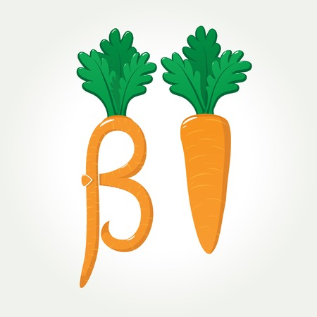 Illustration pour Healthy and tasty carrot provides you very useful Beta-Carotene (provitamin A) and many other vitamins - image libre de droit