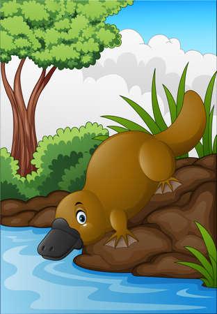 illustration of Cartoon platypus in forest creek