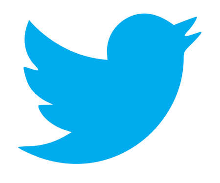 Twitter, Logo on Computer Screen