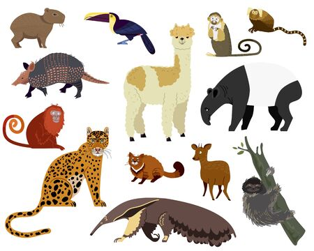 Illustration pour South American animal vector illustration. Cartoon armadillo, tapir, capybara, cute alpaca wild or zoo animal jungle character. Llama, jaguar in Brazilian America animalistic set isolated on white - image libre de droit