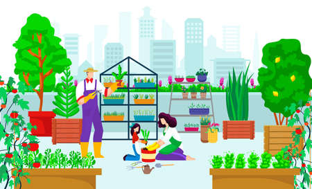 Illustration for Urban garden at city building, vector illustration. Eco agriculture gardening at roof concept, plant nature grow at rooftop background. - Royalty Free Image