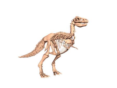 Photo pour Skeleton of a dangerous dinosaur - image libre de droit