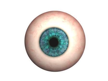 Photo for Eyeball with lens and iris - Royalty Free Image