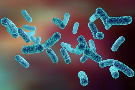 Microscopic illustration of bacteria, model of bacteria, realistic illustration of microbes, Escherichia coli, Klebsiella, Salmonella, Clostridium, Pseudomonas, Mycobacterium, Shigella, Legionella