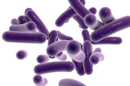 Illustration of Vibrio cholera isolated on white background, model of bacteria, realistic illustration of microbes, microorganisms, bacterium which causes cholera