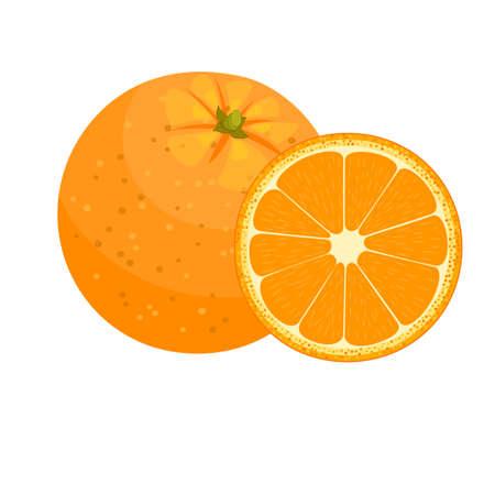 Set of fresh ripe half oranges fruit. vector illustration in flat style
