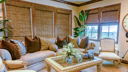 Foto de Panorama frame Upstairs family room with modern furnishings and vibrant house plants. Wonderful California home real estate listings with powerful visuals. - Imagen libre de derechos