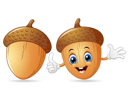 Illustration pour Happy acorn cartoon giving thumb up - image libre de droit