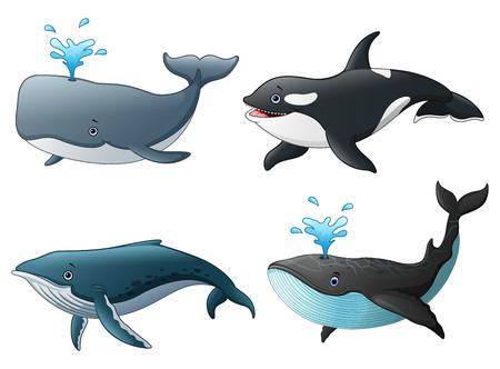 Illustration pour Vector illustration of Set of sea marine fish - image libre de droit