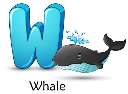Illustration pour Vector illustration of Letter W is for Whale cartoon alphabet. - image libre de droit