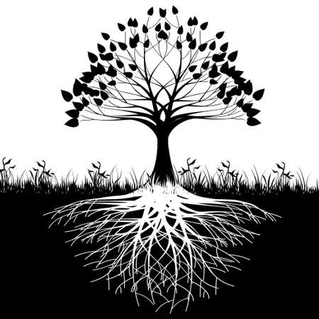 Illustration pour Tree roots silhouette - image libre de droit