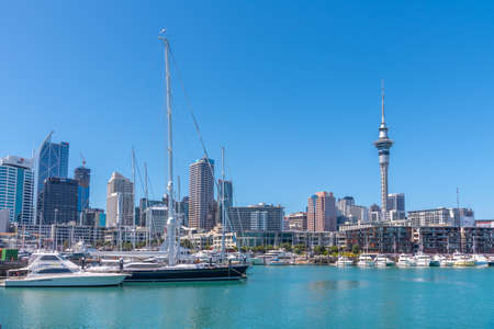 Photo for AUCKLAND, NEW ZEALAND, FEBRUARY 20, 2020: Sky tower view from port of Auckland, New Zealand - Royalty Free Image