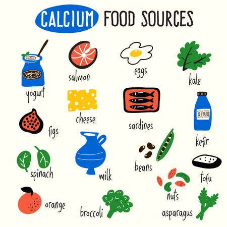 Illustration pour Vector cartoon illustration of calcium food sources. Infographic elements. - image libre de droit