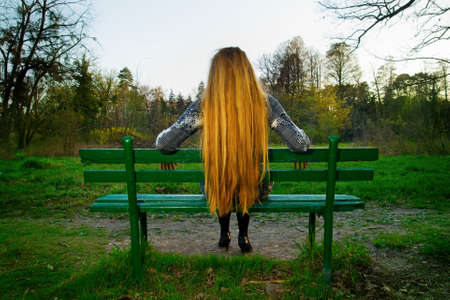 Back of blond hair female sitting on park benchの写真素材