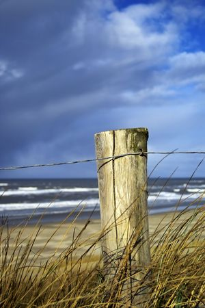 Close-up of wooden fencing pole on the beach, Holland