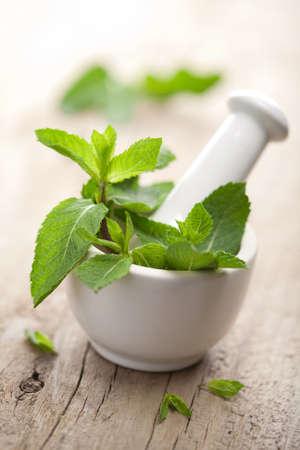 Photo pour mortar with herbs - image libre de droit