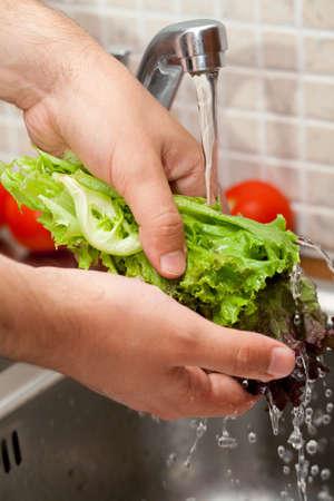 man washing salad leaves