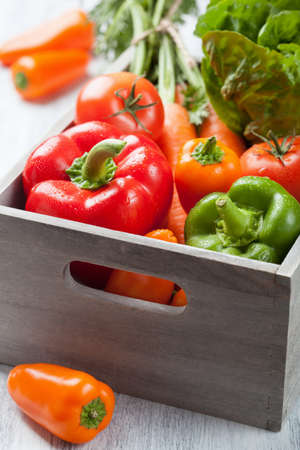 various fresh vegetable in boxの写真素材