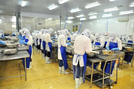 Photo for TRA VINH, VIETNAM - NOVEMBER 19, 2012: Workers are peeling and processing fresh raw shrimps in a seafood factory in the Mekong delta of Vietnam - Royalty Free Image