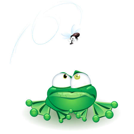Frog with flie. Vector illustration on white background