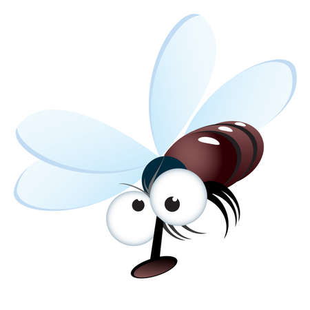 Cartoon style illustration of a fly. Vector illustration on white
