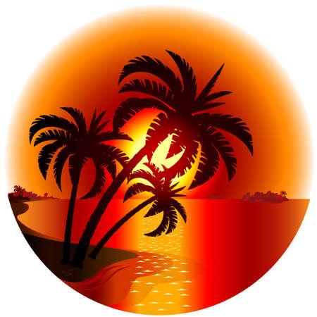 Illustration pour Sunset on a tropical island. Illustration on white background  - image libre de droit