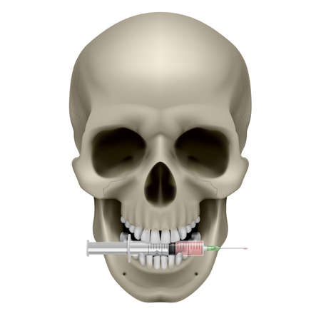Realistic skull with a cigarette. Illustration on white background
