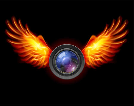 Focus-Fiery wings, a color illustration on a black background