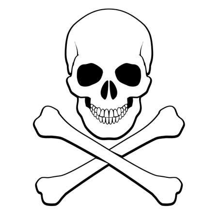 Skull and crossbones. Illustration on white background for design