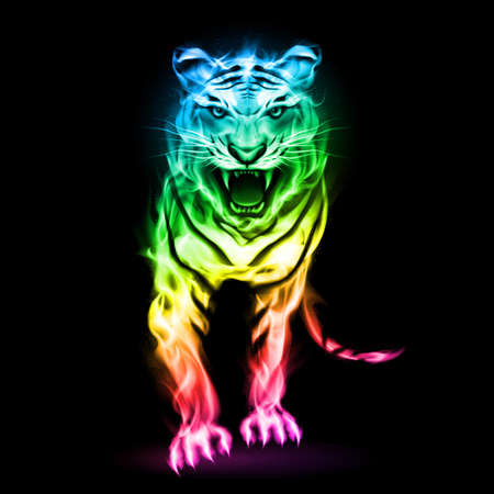 Fire tiger in spectrum colors isolated on black background.