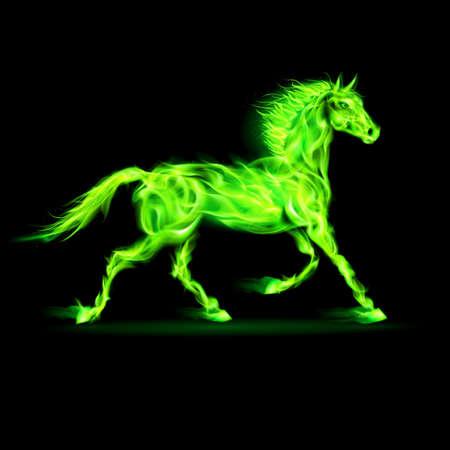 Illustration of green fire horse on black background.