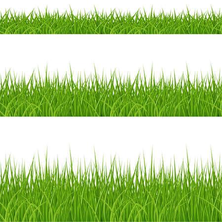 Illustration pour Set of Green Grass Elements on White Background - image libre de droit