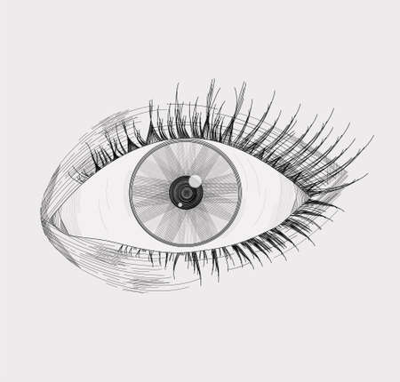 Illustration pour Vector illustration of a realistic left eye, with lashes, made and shaded based on lines, isolated on a light gray background - image libre de droit