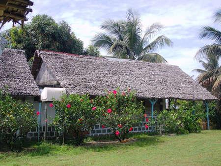 La fameuse trano falafa ou maison en falafa de Madagascar,photos prise sur la partie Est de la Grande île