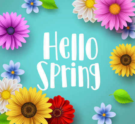 Ilustración de Hello spring text vector banner greetings design with colorful flower elements like daisy and sunflower in green floral background for spring season. Vector illustration. - Imagen libre de derechos