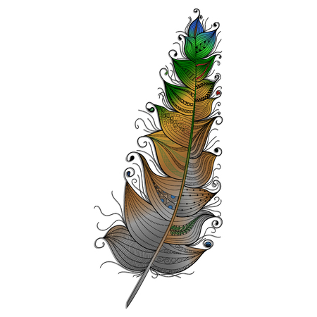 Multi-colored feather with a graceful ornament isolated on a white background