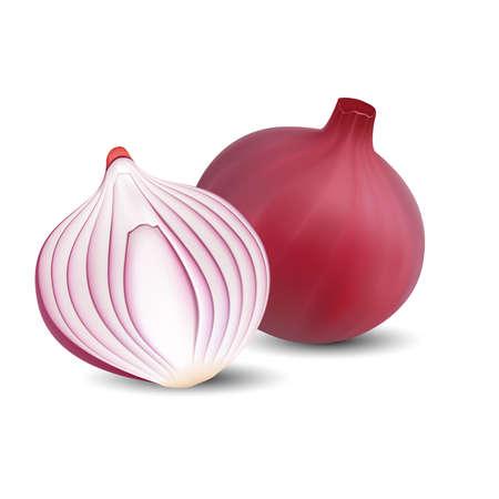 Illustration pour Red onion 3D vector design isolated on white background. - image libre de droit