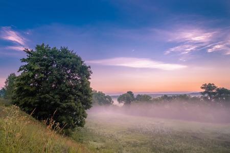 Photo pour Morning fog in a ravine at sunrise. - image libre de droit