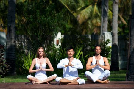 An attractive group of people practicing yoga outdoors