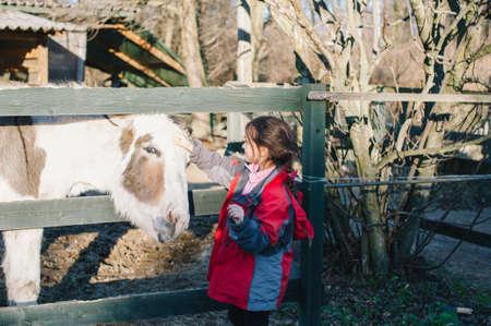 little girl caress to donkey