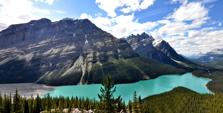 Peyto Lake in Rocky Mountains Canada