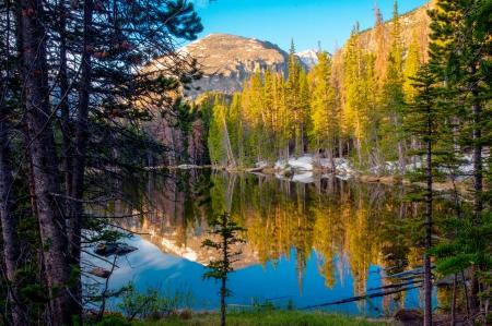 Foto de Nymph Lake with reflections at Rocky Mt National Park - Imagen libre de derechos
