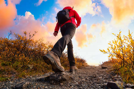 Photo pour View of Woman Hiking Rocky Trail from Below during Fall in Canadian Nature. Sunset Sky Artistic Render. Taken in Tombstone Territorial Park, Yukon, Canada. - image libre de droit