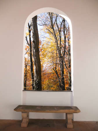 Look through a window in the colorful autumn forest