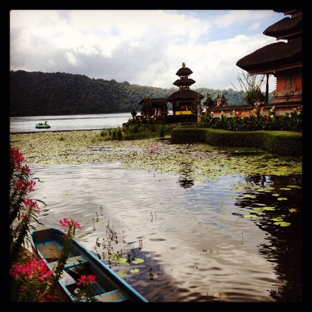 Bali Freedom